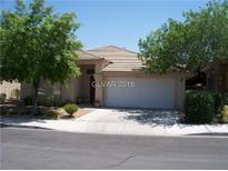 View 8225 Rocky Bluff Way Las Vegas NV