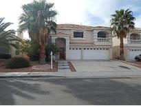 View 9811 Trailing Daisy St Las Vegas NV