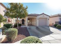 View 10265 Chigoza Pine Ave Las Vegas NV