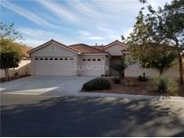 View 8811 Rio Grande Falls Ave Las Vegas NV