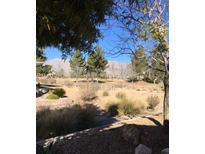 View 2112 Cyprus Dipper Ave North Las Vegas NV