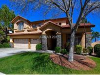 View 10012 Laurel Springs Ave Las Vegas NV