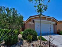 View 10255 Villa Arceno Ave Las Vegas NV