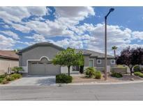 View 10577 Ettenmoor Ave Las Vegas NV