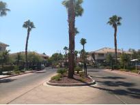 View 10525 Autumn Pine Ave # 204 Las Vegas NV