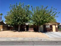 View 3904 El Cederal Ave Las Vegas NV