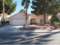 View 1041 Sleetridge Dr Las Vegas NV
