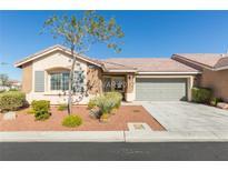View 10396 Melon Cactus St Las Vegas NV