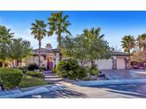 View 10899 Eden Ridge Ave Las Vegas NV