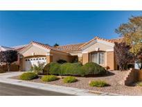 View 10408 Sea Palms Ave Las Vegas NV