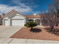 View 4117 Tea Garden Dr Las Vegas NV