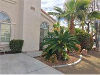 View 8009 Sandmark Dr Las Vegas NV