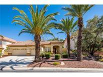 View 8837 Cortile Dr Las Vegas NV