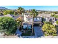 View 11304 Golden Chestnut Pl Las Vegas NV