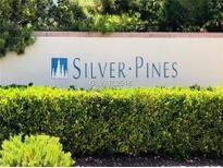 View 300 Amber Pine St # 201 Las Vegas NV