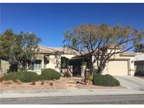 View 10500 Abisso Dr Las Vegas NV
