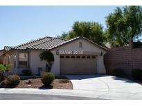 View 11113 Desert Dove Ave Las Vegas NV
