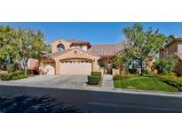 View 11016 Arbor Pine Ave Las Vegas NV